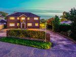 Thumbnail to rent in Long Moss Lane, Preston