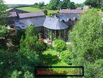 Thumbnail for sale in Llwyndafydd, Nr New Quay