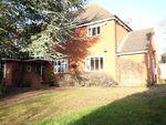 Thumbnail for sale in Hall Lane, Witnesham, Ipswich, Suffolk