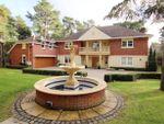 Thumbnail to rent in Avon Castle Drive, Avon Castle, Ringwood