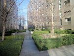 Thumbnail to rent in Gatliff Road, Chelsea