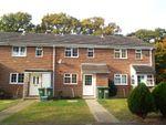 Thumbnail to rent in Siskin Close, Southampton