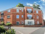 Thumbnail to rent in Marnhull Rise, Winchester