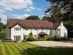 Thumbnail for sale in Powntley Copse, Alton, Hampshire