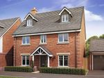 "Thumbnail to rent in ""The Rushton - Plot 249"" at Daventry Road, Southam"