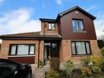 Thumbnail to rent in Waringfield Close, Moira