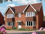 "Thumbnail to rent in ""The Ascot"" at Iden Hurst, Hurstpierpoint, Hassocks"