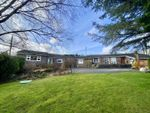 Thumbnail for sale in Fronheulog Hill, Bwlchgwyn