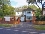 Thumbnail for sale in Woolton Hill Road, Woolton, Liverpool