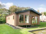 Thumbnail for sale in Mertyn Downing Lane, Mostyn, Holywell, Flintshire