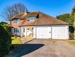 Thumbnail for sale in Lime Close, St Leonards-On-Sea, East Sussex
