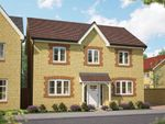 "Thumbnail to rent in ""The Chesnut"" at Gainsborough, Milborne Port, Sherborne"
