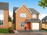 """Thumbnail to rent in """"The Orchid At Kings Park, Corby"""" at Gainsborough Road, Corby"""