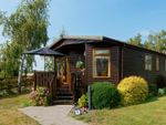 Thumbnail for sale in Country View Park, Cleve Hill, Graveney, Kent