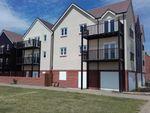 Thumbnail to rent in Ryelands Way, Bridgefield, Ashford