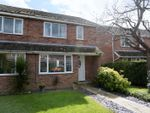 Thumbnail for sale in Beech Close, Thirsk, North Yorkshire