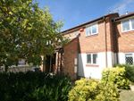 Thumbnail to rent in Stockwood Way, Farnham