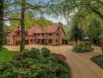 Thumbnail for sale in Straight Mile, Ampfield, Hampshire