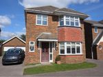Thumbnail for sale in Hazel Grove, Bexhill-On-Sea