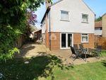 Thumbnail for sale in Avocet Close, Kelvedon, Colchester