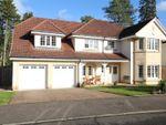Thumbnail to rent in Bellefield Crescent, Lanark