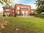 Thumbnail to rent in Alton, Hampshire