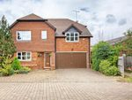 Thumbnail to rent in Finches End, Walkern, Stevenage