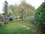 Thumbnail to rent in Park Terrace, Main Road, Sundridge, Sevenoaks