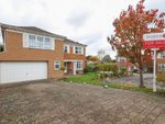 Thumbnail for sale in Holkham Rise, Sheffield