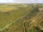Thumbnail to rent in Woodland At Blaen-Hauliw, Pencader, Carmarthenshire