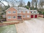 Thumbnail for sale in Brackendale Close, Camberley, Surrey