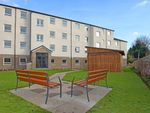 Thumbnail to rent in 33E Froghall Road, Aberdeen