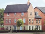 "Thumbnail to rent in ""Brentwood"" at Harbury Lane, Heathcote, Warwick"