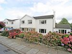 Thumbnail for sale in Y Parc, Groesfaen, Pontyclun