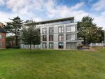 Thumbnail for sale in Newsome Place, Hatfield Road, St Albans