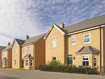 "Thumbnail to rent in ""The Berrington"" at Potton Road, Biggleswade"