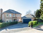Thumbnail to rent in Spruce Place, East Grinstead