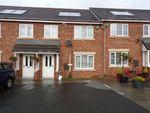 Thumbnail to rent in The Showfield, Haydon Bridge, Hexham
