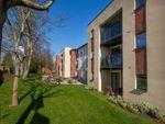 Thumbnail to rent in Wood Road, Wolverhampton