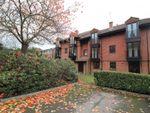 Thumbnail to rent in Ellingham, Midhope Road, Woking