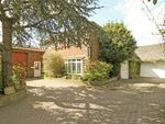 Thumbnail to rent in Crow Lane, Crow, Ringwood
