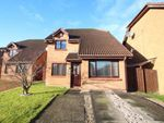 Thumbnail to rent in Eriskay Avenue, Newton Mearns, East Renfrewshire