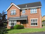 Thumbnail to rent in The Beeches, Hightown Road, Newtownabbey