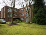 Thumbnail to rent in 1A Hermitage Road, Edgbaston, Birmingham