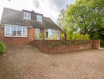 Thumbnail to rent in Hill Drive, Eastry, Sandwich