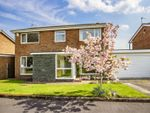 Thumbnail to rent in The Limes, Stannington, Morpeth