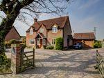 Thumbnail to rent in Morley St Botolph, Near Wymondham, Norfolk