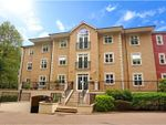 Thumbnail to rent in Regents Drive, Woodford Green