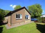 Thumbnail to rent in Coblecrook Lane, Alva