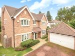 Thumbnail for sale in Walnut Tree Close, Ickenham, Middlesex